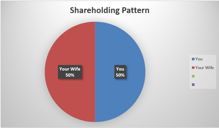 a pie chart of shareholding pattern
